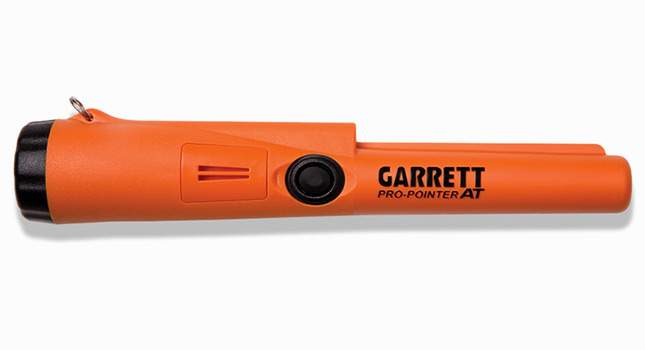 garrett-pro-pointer-at-2