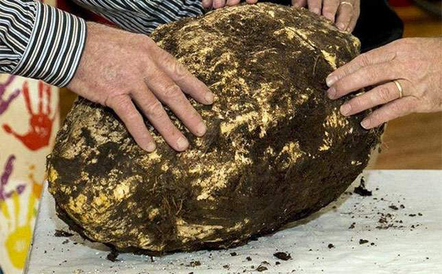 2000-year-old-lump-of-butter-unusual-finds-01