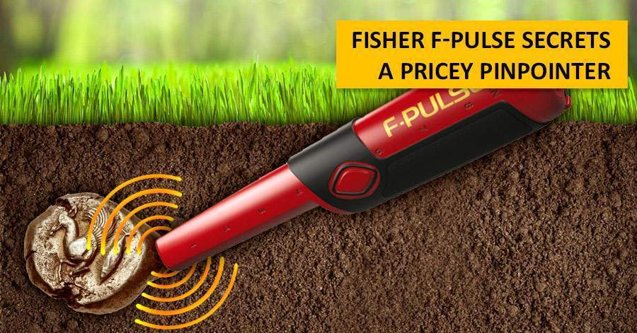 Fisher F-Pulse Secrets. A pricey pinpointer